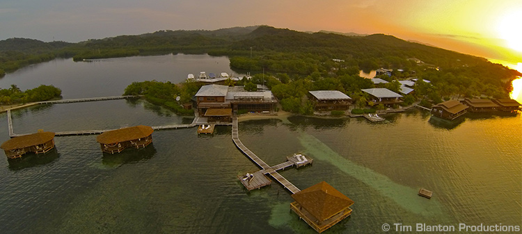 Island Roatan - CoCo View Resort