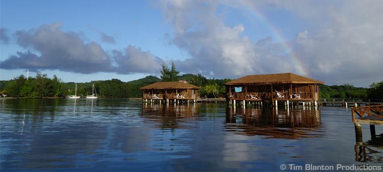 The Digital Shootout Diving/Resort Information