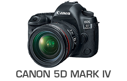 Canon 5D Mark IV Underwater Review