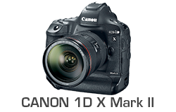 Canon 1DX Mark II Underwater Review