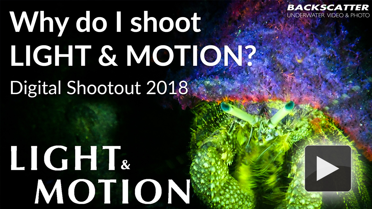 Why do I shoot Light and Motion?